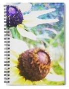 Summer Daisies Spiral Notebook