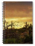 Summer Desert Skies  Spiral Notebook