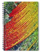 Summer Spiral Notebook