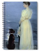 Summer Evening At Skagen Spiral Notebook