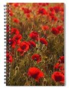 Summer Feelling Spiral Notebook
