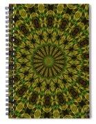 10696 Summer Fire Mask 54 Kaleidoscope 1 Spiral Notebook