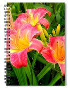 Summer Flame Spiral Notebook