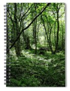Summer Forest On A Sunny Day Spiral Notebook