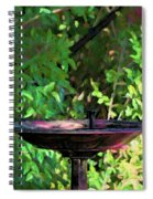 Summer Fountain Impasto Spiral Notebook