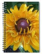Summer Glow Spiral Notebook