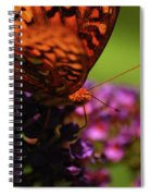 Summer Glow Spiral Notebook