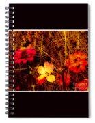 Summer Glow On Flowers Spiral Notebook