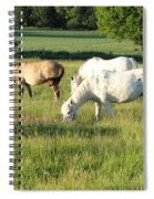 Summer Grazing Spiral Notebook