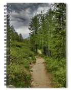 Summer Hike And Storm Clouds Spiral Notebook