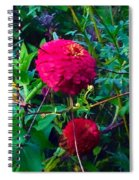 Summer In The Country Spiral Notebook