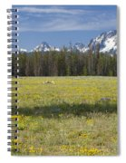 Summer In The Sawtooths Spiral Notebook