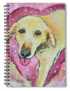 Summer In The Sky For You Spiral Notebook