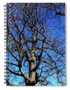 Summer In United States Spiral Notebook