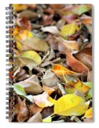 Summer Leaves For Fall Spiral Notebook