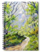 Summer Lights Spiral Notebook