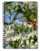 Summer Lovin Spiral Notebook