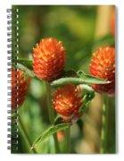 Summer Meadows Spiral Notebook