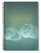 Two Seashell Reflections Spiral Notebook