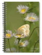 Summer Moment.. Spiral Notebook