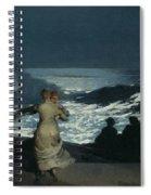 Summer Night Spiral Notebook