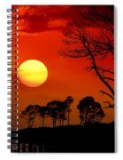 Summer Nights Spiral Notebook
