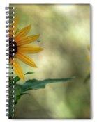 Summer Of Sunflowers  Spiral Notebook