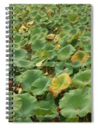 Summer Palace Lotus Pond Spiral Notebook