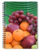 Cool Summer Patio Tidbits Spiral Notebook