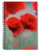 Summer Poppy Meadow 2 Spiral Notebook