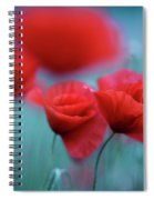 Summer Poppy Meadow 3 Spiral Notebook