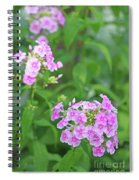 Summer Purple Flower Spiral Notebook