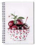 Summer Red Cherries Spiral Notebook