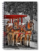 Summer Ride Spiral Notebook