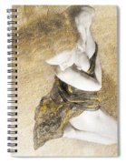 Summer Romance V5 Spiral Notebook