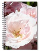 Summer Rose Garden Pink Flowers Baslee Troutman Spiral Notebook