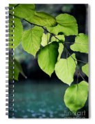 Summer Showers Spiral Notebook