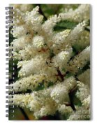 Summer Snow 2 Spiral Notebook