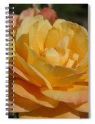 Summer Surprise Spiral Notebook