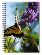 Summer Swallowtail Spiral Notebook