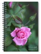 Summer Sweet Rose Spiral Notebook