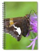 Summer Sweets Spiral Notebook