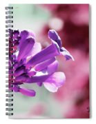 Summer Vine Spiral Notebook