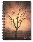 Summerland Light In Winter Spiral Notebook
