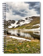 Summit Lake Study 3 Spiral Notebook