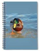 Sumo Wrestler Spiral Notebook
