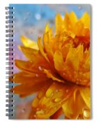 Sun And Rain Spiral Notebook