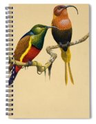 Sun Birds Spiral Notebook