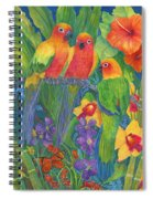 Sun Conure Parrots Spiral Notebook