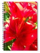 Sun Dappled Lily Spiral Notebook